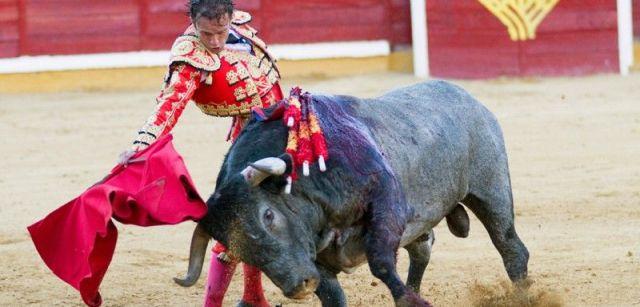 El torero Antonio Ferrera en una corrida de toros en Badajoz (España) el año 2013 / Foto: Otografias