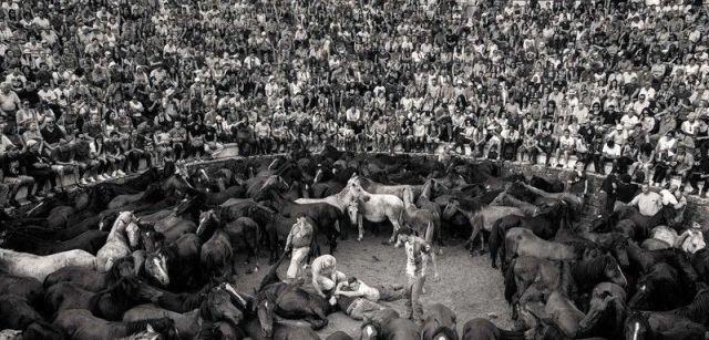 Una multitud llena las gradas que rodean el 'curro' o corral donde se marca y rapa a los animales / Foto: Javier Arcenillas