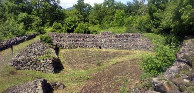 Una artiga, terreno agrícola ganado a la arboleda y a los conos volcánicos, en el Bosc de Tosca / Foto: EA
