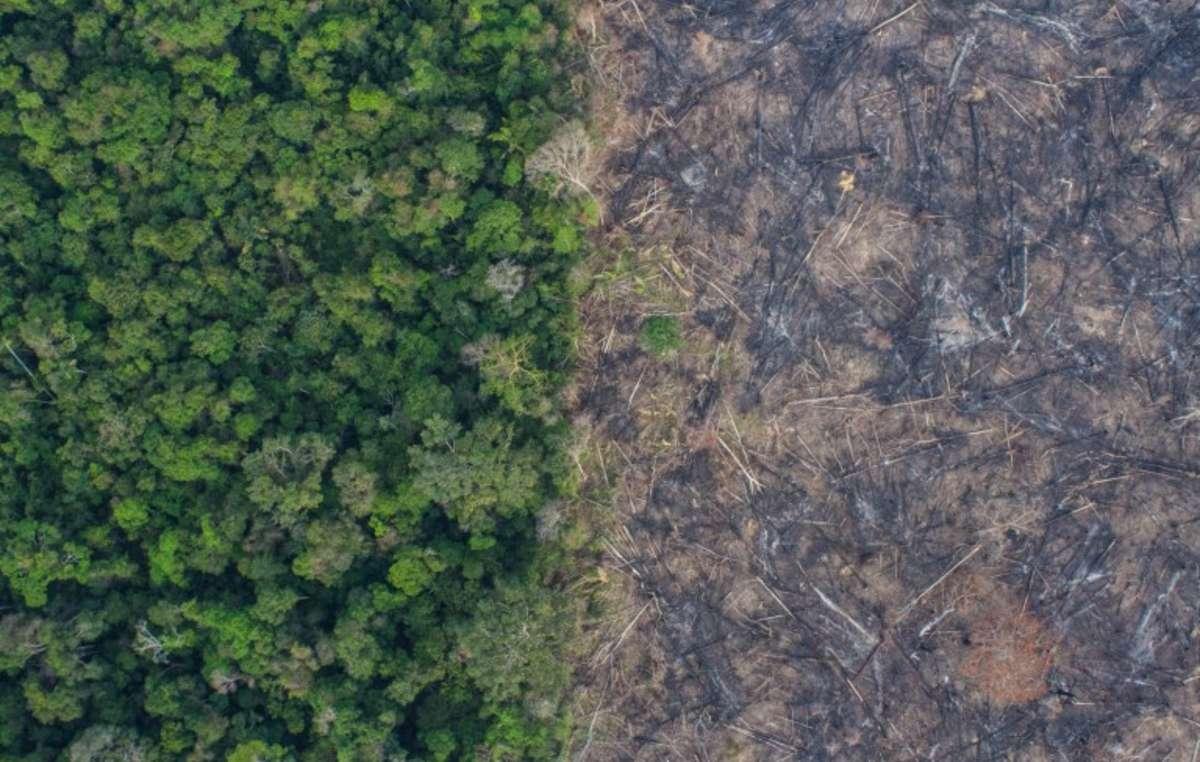 Imagen aérea de las tierras de los Uru Eu Wau Wau tras los últimos incendios / Foto: Kaninde