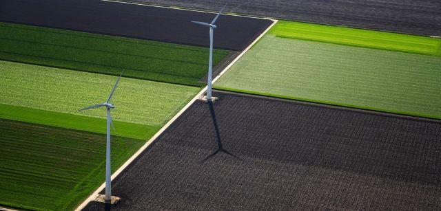 Aerogeneradores entre cultivos en la provincia de Flevoland, la mayor recuperación de tierras al mar de la historia / Foto: Josep Cano