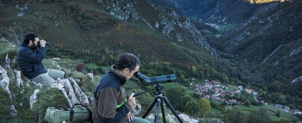 El guarda Juan Díaz (en primer plano) y el director del parque, Luis Fernando Alonso, observando animales con telescopios en el Rozo de la Peral / Foto: Roger Rovira